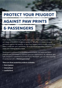 Peugeot Paint Protection